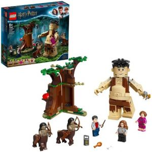 LEGO Harry Potter 75967 La foresta proibita: l'incontro con la Umbridge